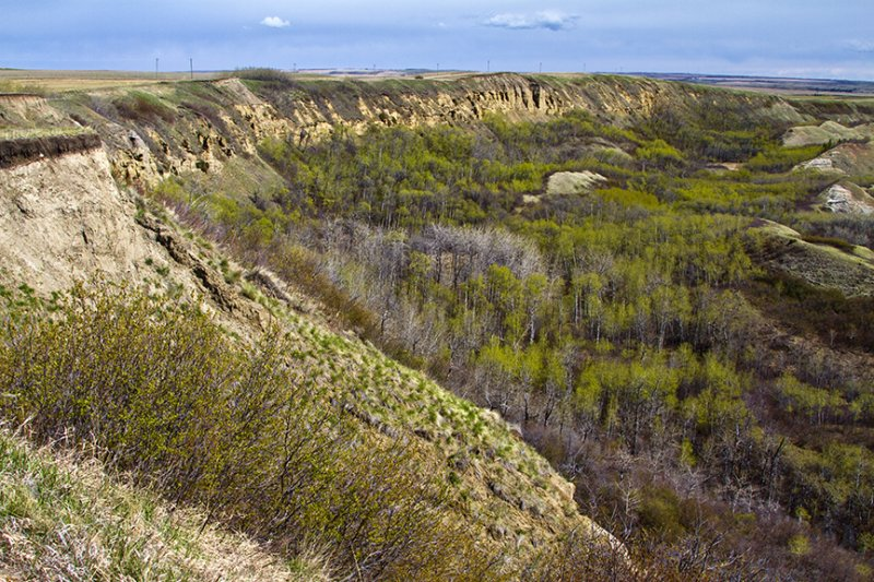 Along the North Ridge
