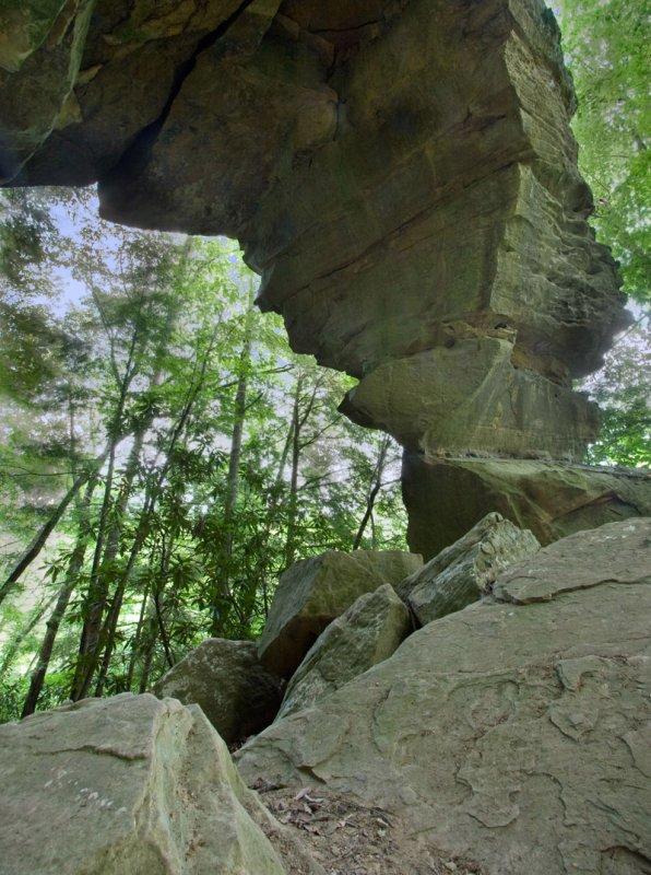 Suzannas Arch