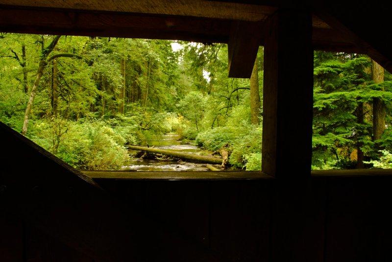 Through the Bridge Window