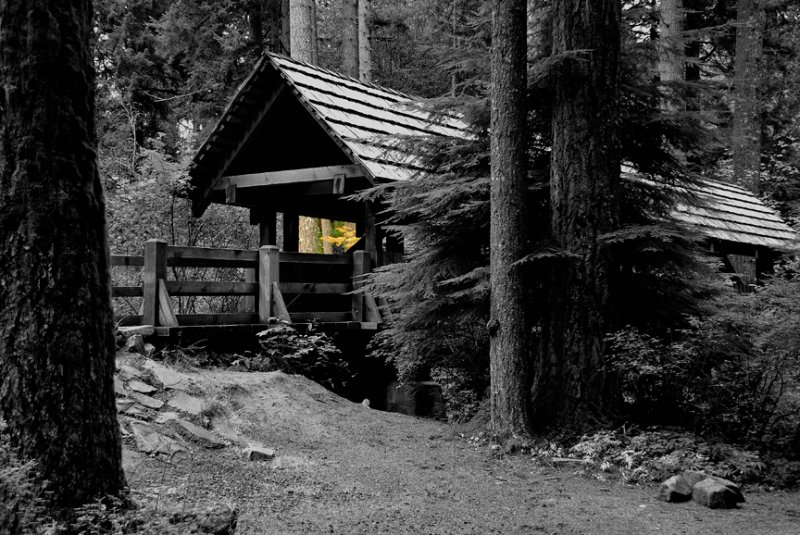 Silverfalls State Park Bridge B&W with a little Color