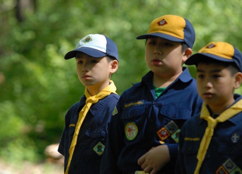 Cubs Scout