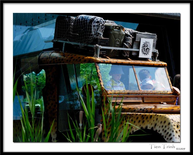 Safari Explorers