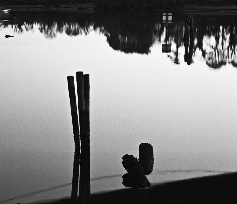 Pilings, Pagan River, Smithfield, Virginia, 2010.jpg