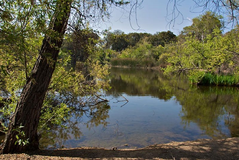 Along the trail, El Dorado Nature Center