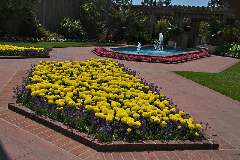 On the grounds of Sherman Gardens, Corona Del Mar