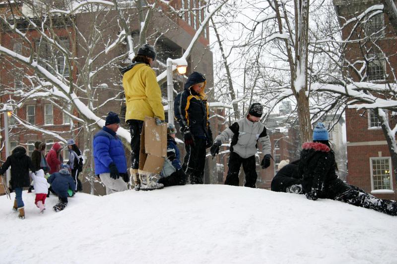 Childrens Playground Mounds