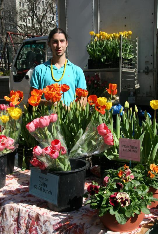 Tulip & Pansy Vendor - Flower Market