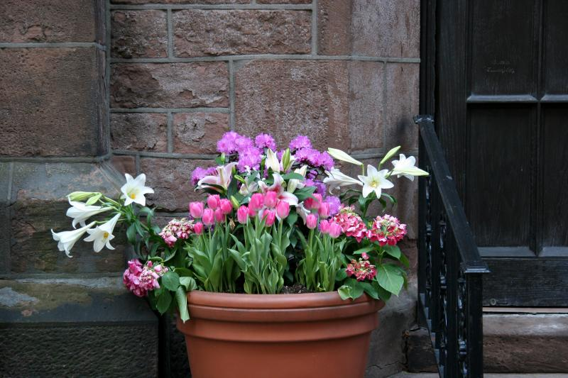 Entrance Floral Arrangement - Church of the Ascension