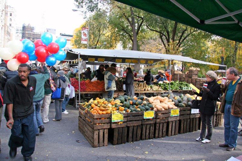 Farmers Market View - Squash