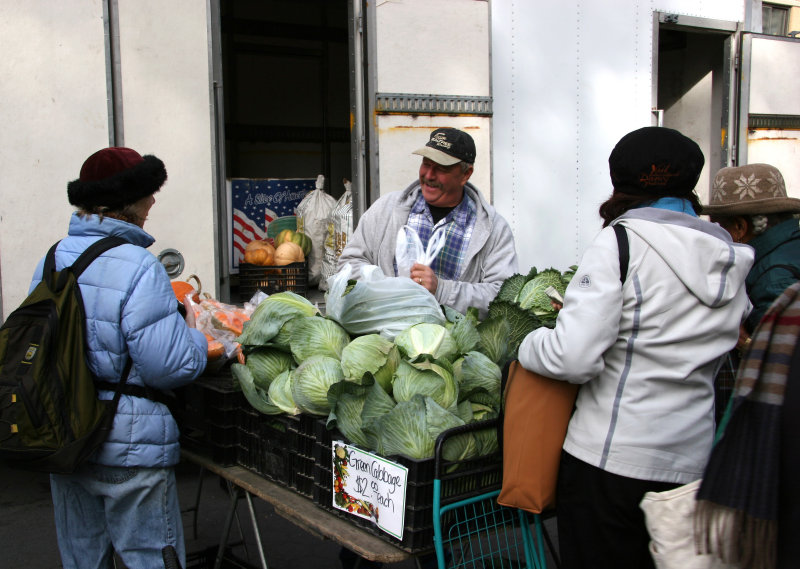 Farmers Market - Cabbage