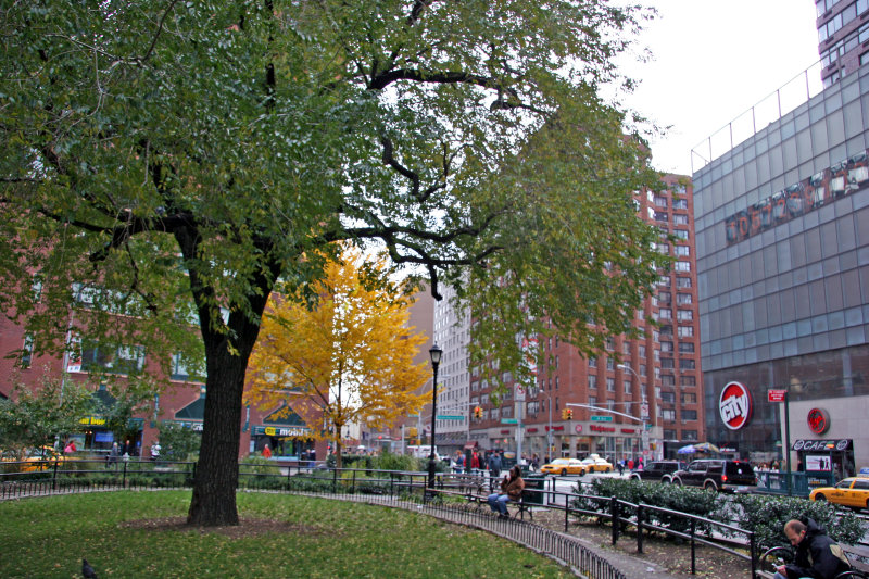 Park View at 14th Street & 4th Avenue