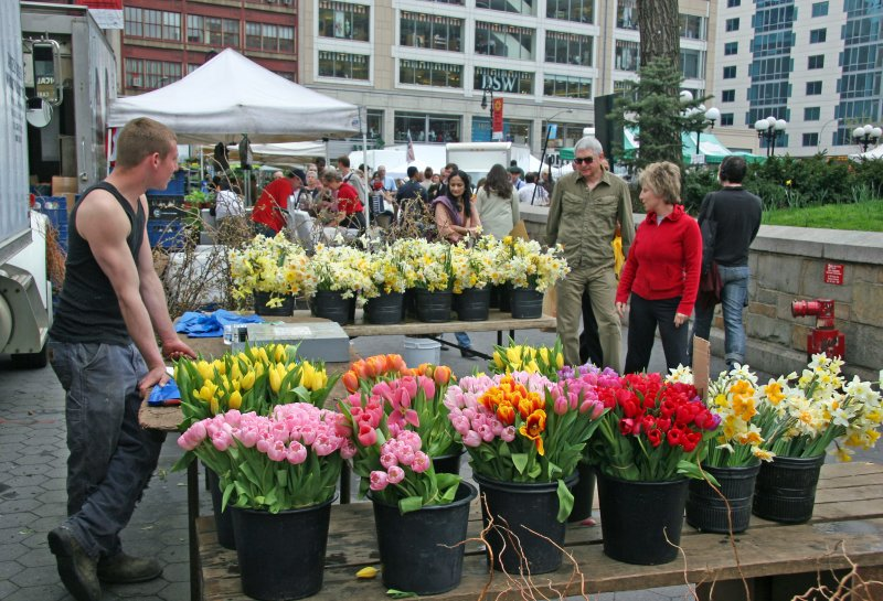 Saturday at the Farmers Flower Market