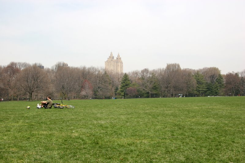 The Great Lawn