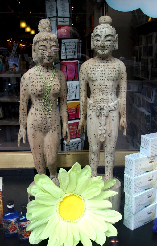 Acupuncture Models - East West Bookstore
