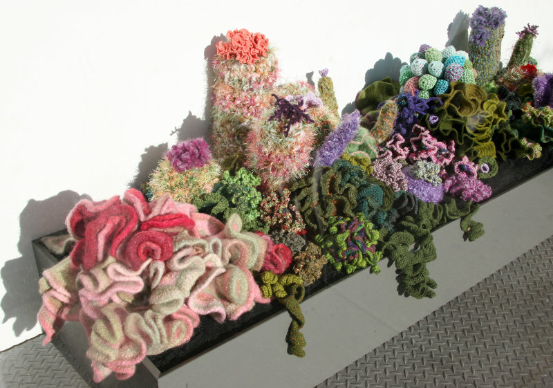 Crocheted Coral Reef - NYU Broadway Windows