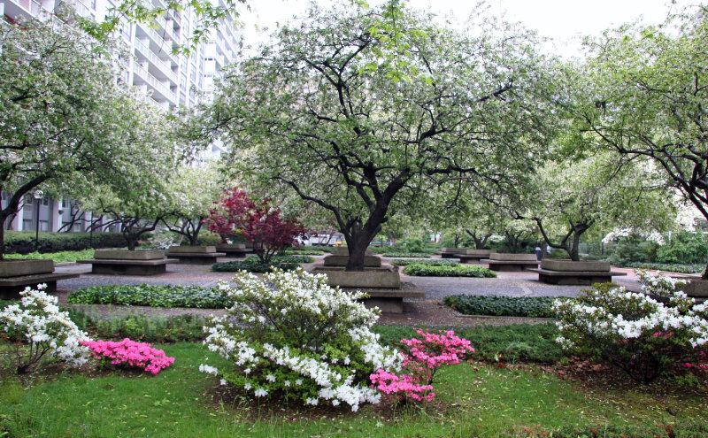 Garden View - Azalea & Crab Apple Trees in Bloom