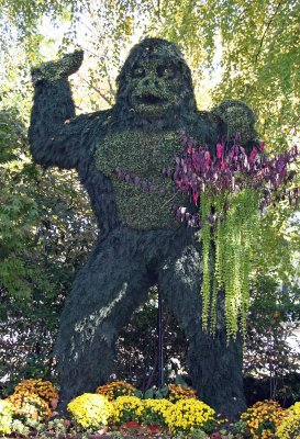 Gorilla Topiary - Tavern of the Green Garden