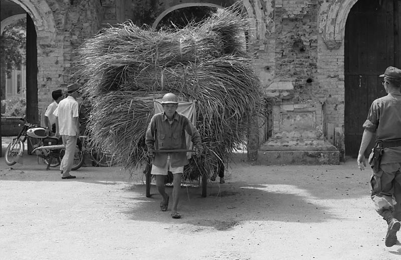 Grass Cart