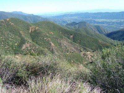 The Way Down Gridley Canyon