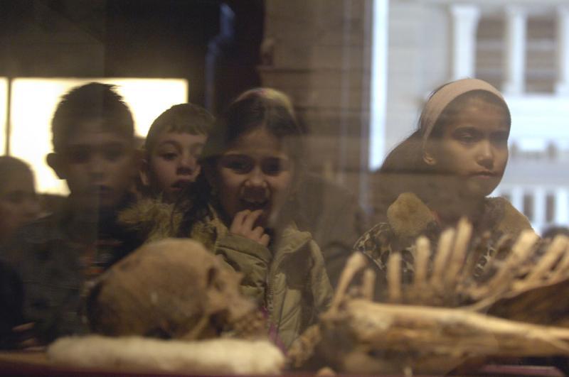 Istanbul Archaeological Museum 1206.jpg