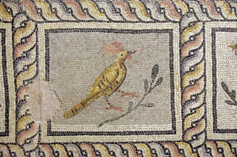 Gaziantep 092007 0225.jpg