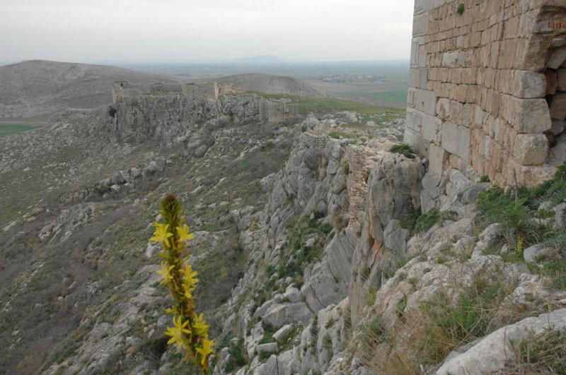 Anavarza and Anavarza Castle 08032008 2800.jpg