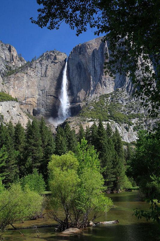 Yosemite Falls Vista.jpg