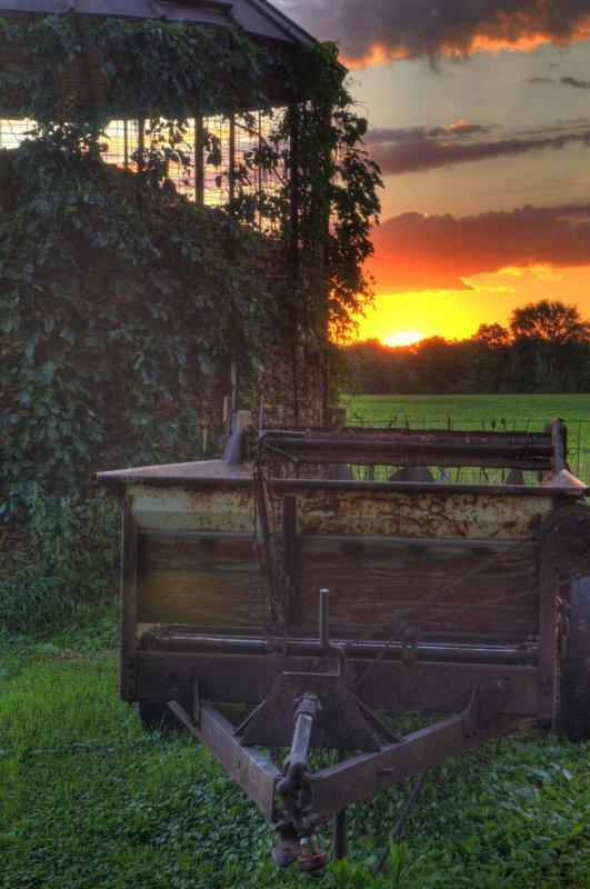 Morning Sun on the Farm