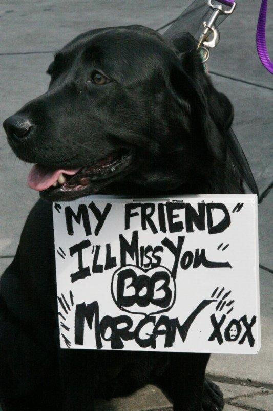 010 Morgan.jpg