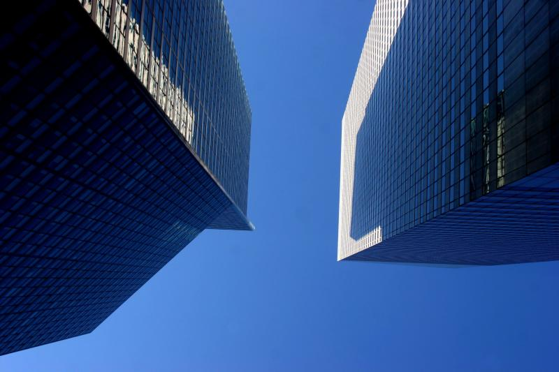 A View from Below.jpg
