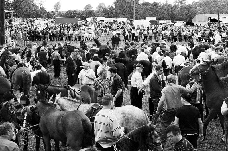 Horse-Fair, Spancil-Hill