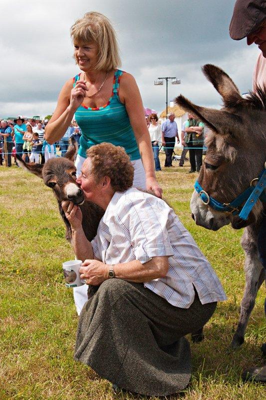Kiss the Donkey