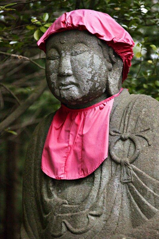Buddhas Bib
