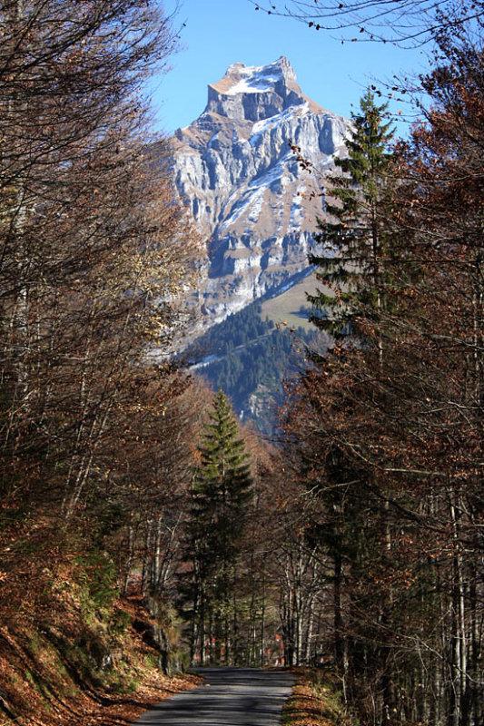 Autumn with Mount Hanen behind