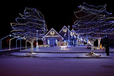 Amazing Holiday Display!