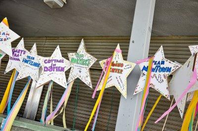 starwalk2010-9.jpg