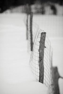Garden Fence Post in Snow