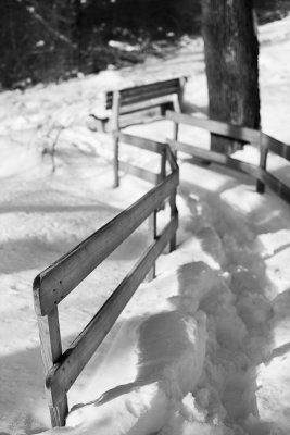 Path Down to the Bench