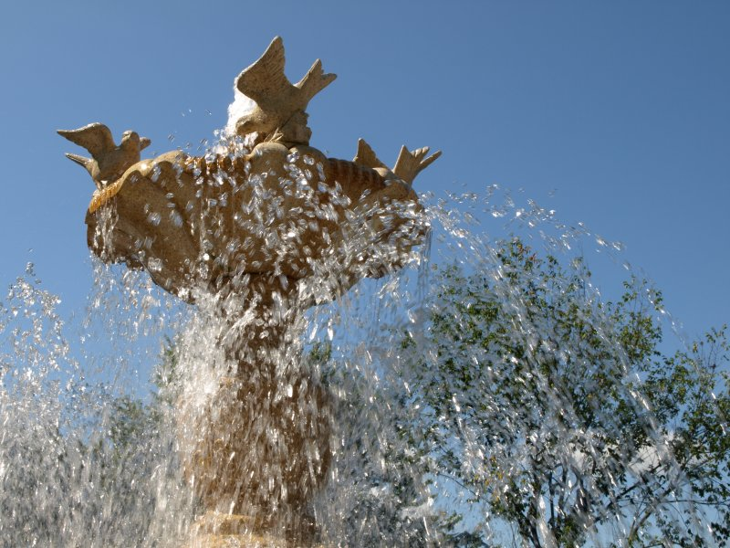 Fountain of Birds