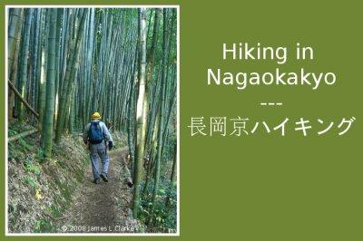 Hiking in Nagaokakyo