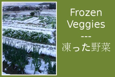 Frozen Veggies