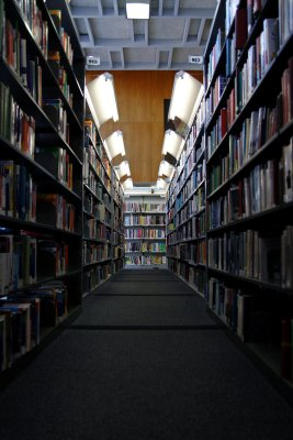 A child's eye view of the library