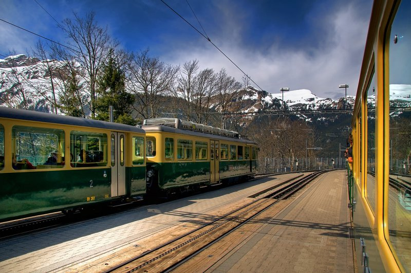 Trains at Wengen