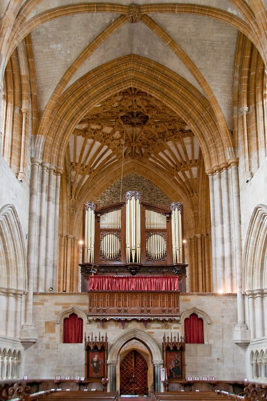 Milton Abbey ~ organ pipes