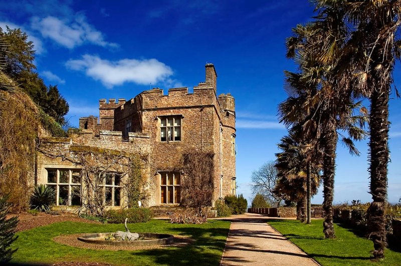 Dunster Castle ~ house and palm trees (2080)