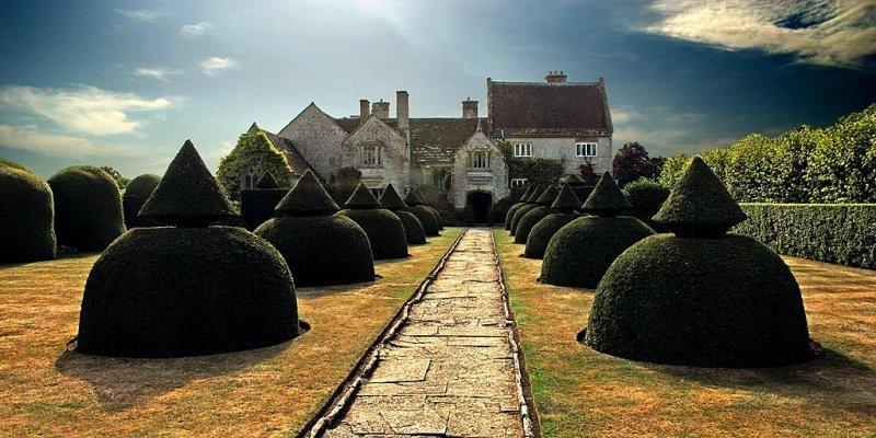 Topiary, Lytes Cary Manor (9819)
