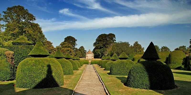 Topiary, path and dovecote, Lytes Cary Manor