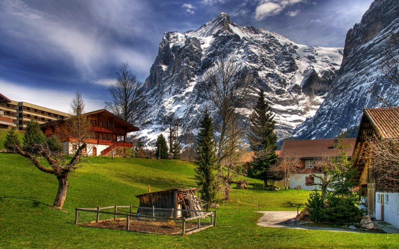 Wood shed and fir trees, Grindelwald (5700)