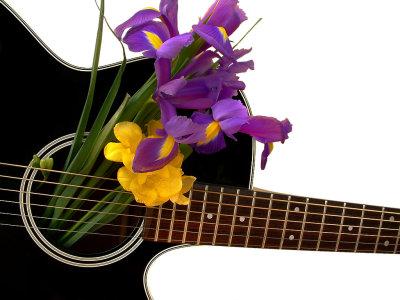 Black Takamine and flowers