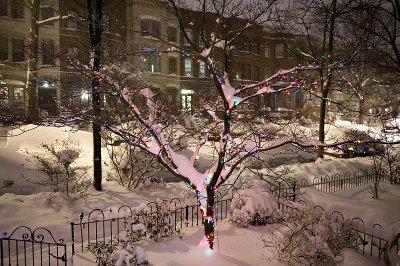 December: Silent night (ISO 1600)